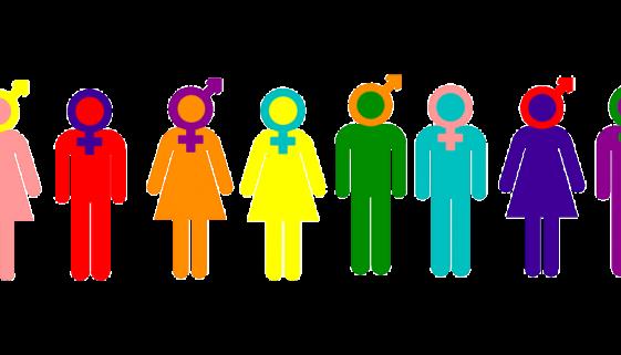 Women Men People Human Gender - OpenClipart-Vectors / Pixabay